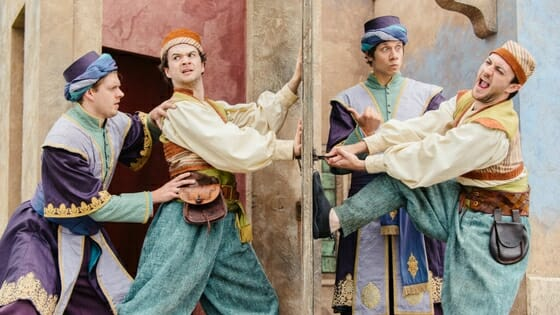 TLCM The Comedy of Errors at Raglan Castle - Photographer Jack Offord