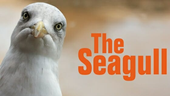 The Seagull at Lyric Hammersmith