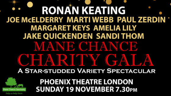 Ronan Keating and Stars Mane Chance Charity Gala