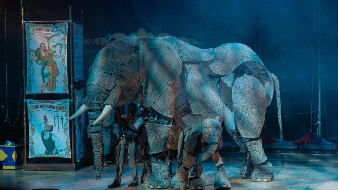Circus Southbank Centres Royal Festival Hall December Photo credit Manuel Harlan