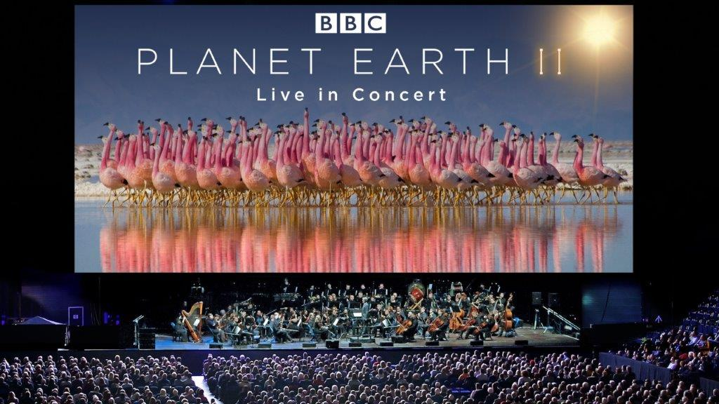 Planet Earth II Live in Concert Photograph by Justin Anderson Copyright BBC NHU