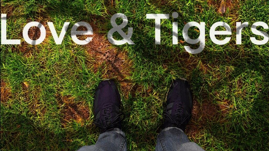 Review: Love & Tigers at The Hen and Chickens Theatre
