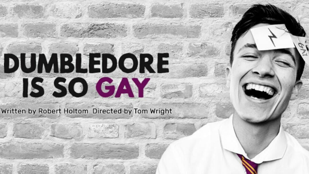 Dumbledore Is So Gay at VAULT Festival