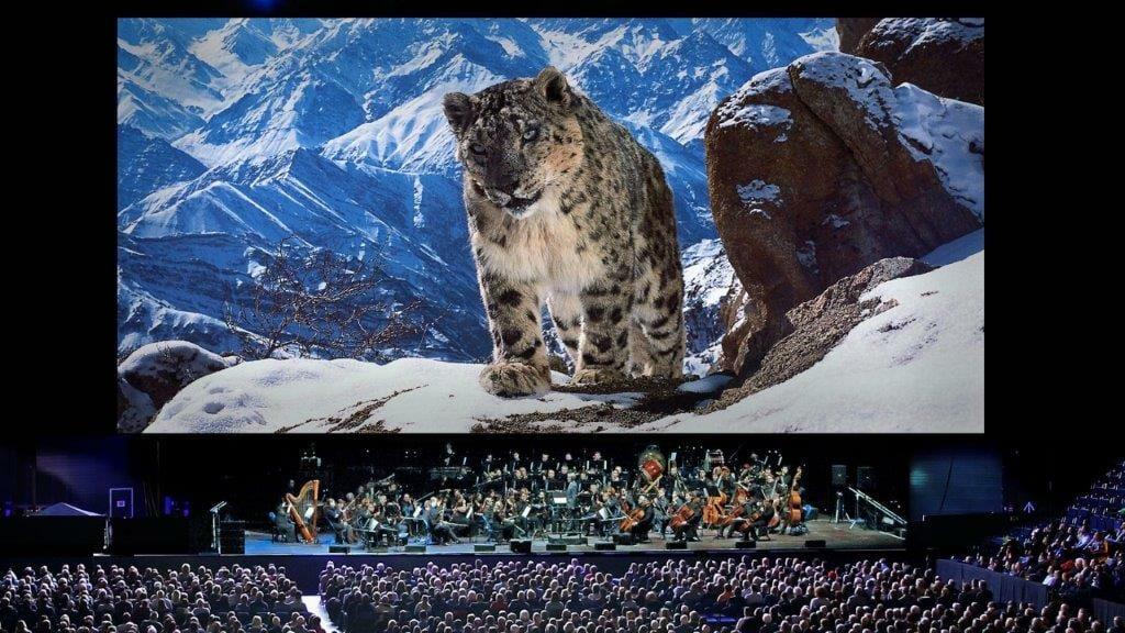 Planet Earth II Live in Concert SnowLeopard